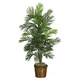 """Home Accent 56"""" Areca Tree with Basket"""