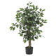 Home Accent 3' Ficus Silk Tree