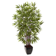 Home Accent 5' Bamboo Silk Tree with Planter