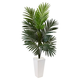 Home Accent 4.5' Kentia Palm Tree in White Tower Planter