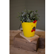 Decorative Painted Metal Chick Planter
