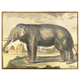 Home Accents Diderot Elephant Plaster Art