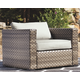 Spring Dew Lounge Chair with Cushion