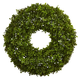 "Home Accents 22"" Boxwood Wreath"