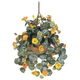 Home Accents Nasturtium Silk Hanging Basket