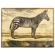 Home Accents Diderot Zebra Plaster Art