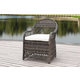 Safavieh Davies Wicker Arm Chair (Set of 2)