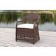 Safavieh Davies Wicker Arm Chair (Set of 2)