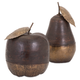 Home Accents Wood and Brass Apple and Pear (Set of 2)