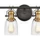 Steel Chadwick 4-Light Vanity Light