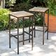 Southern Enterprises Palmer Indoor/Outdoor Barstools 2-Piece