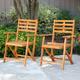 Southern Enterprises Tamman Contemporary Outdoor Armchairs 2-Piece Set