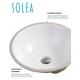 Safavieh Nerida Porcelain Ceramic Vitreous Round Bathroom Sink