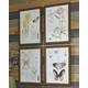 Carlisia Wall Art (Set of 4)