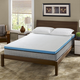 I Love Pillow Out Cold Twin Mattress Topper