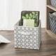 Contemporary Quatrefoil Storage Cube