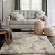 Nourison Fusion Beige and Gray 5'x7' Low-pile Shag Area Rug
