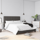 DHP Atwater Living Elvia Full Upholstered Bed