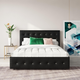 DHP Atwater Living Sydney Full Upholstered Bed with Storage
