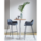 Euro Style Daphne Bar Stool In Dark Gray Fabric And Matte Black Legs (Set of 2)
