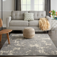 Nourison Charcoal and Ivory 4'x6' Area Rug