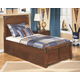 Delburne Twin Panel Bed with Storage