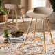 Mairi Beige Plastic and Wood Finished 2-Piece Counter Stool Set