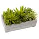 Nearly Natural  Succulent Garden w/Concrete Planter