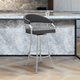 Palmdale  Swivel Modern Faux Leather Bar and Counter Stool in Brushed Stainless Steel Finish