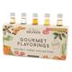 Holiday - Monin Premium Gourmet Syrup Mini Sampler Pack