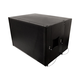 Stage Right MiniRay 12 Active Line Array 12-inch Subwoofer 700W
