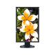 "NEC Display MultiSync E233WM-BK 23"" LED LCD Monitor - 16:9 - 5 ms - 1920 x 1080 - 16.7 Million Colors - 250 Nit - 25,000:1 - Full HD - DVI - VGA - DisplayPort - 19 W - EPEAT Silver, TCO Certified"