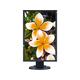 """NEC Display MultiSync EA275WMI-BK 27"""" LED LCD Monitor - 16:9 - 6 ms - 2560 x 1440 - 16.8 Million Colors - 350 Nit - 1,000:1 - WQHD - Speakers - DVI - HDMI - DisplayPort - USB - 61 W - Black"""