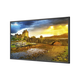 "NEC Display LCD Professional Large Format Display - 65"" LCD - 3840 x 2160 - LED - 450 Nit - 2160p - HDMI - USB - DVI - SerialEthernet"