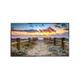 "NEC E556 55"" HD Commercial LED Monitor with ATSC/NTSC Tuner"
