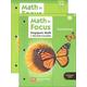 Math in Focus Grade 3 Enrichment A and B Set