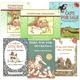 StoryTime Treasures Package