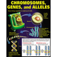 DNA and Heredity Teaching Poster Set