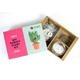 DIY Thirsty Plant Kit