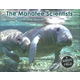 Manatee Scientists (Scientists in the Field)