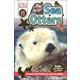 Sea Otters (DK Reader Level 1)