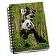 Pandas 3D Notebook 4