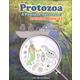 Protozoa: A Poseidon Adventure! Student Booklet