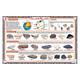 Rocks & Minerals Placemat