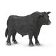 Black Angus Bull (Safari Farm)