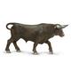 Black Bull (Safari Farm)