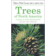 Trees of North America: Guide to Field Identification