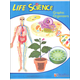 Middle School Life Science Graphic Organizers