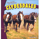 Clydesdales (World of Horses)