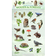 Woods & Forests Sticker Play Scene